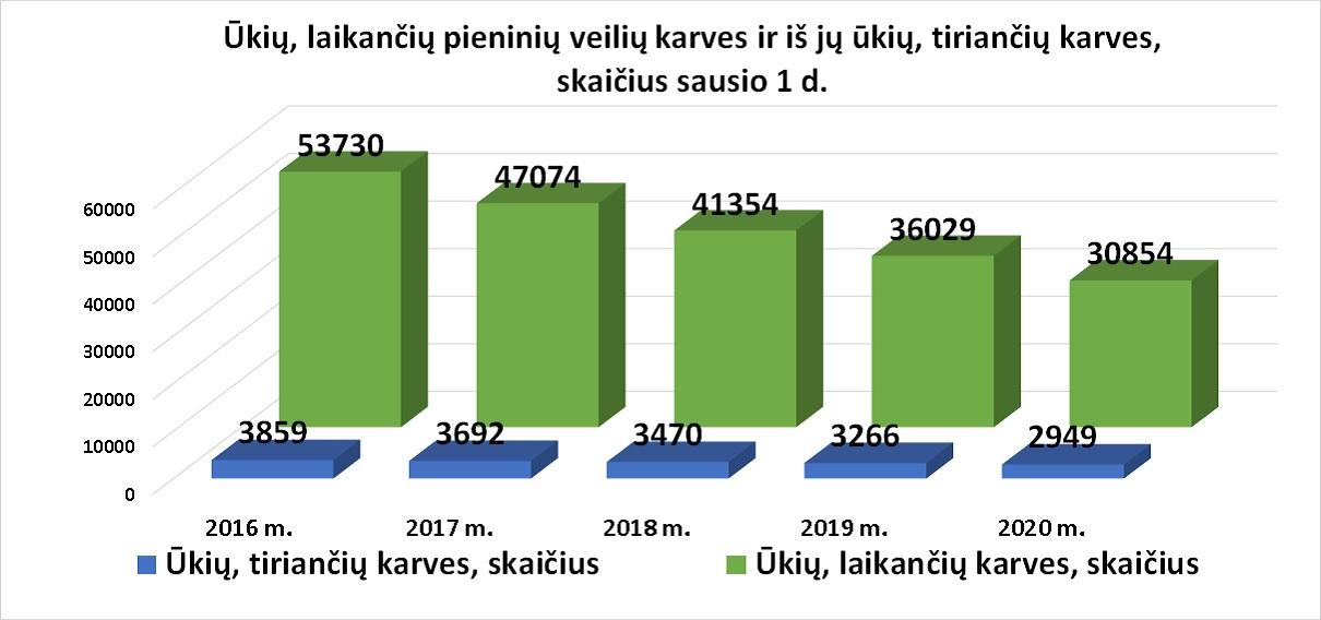 5 pav. Ūkių, laikančių pieninių veislių karves, ir iš jų ūkių, tiriančių karves, skaičius sausio 1 d.