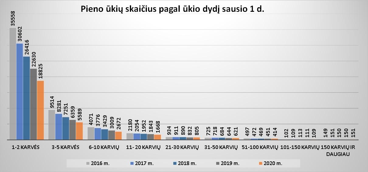 7 pav. Pieno ūkių skaičius pagal ūkio dydį sausio 1 d.