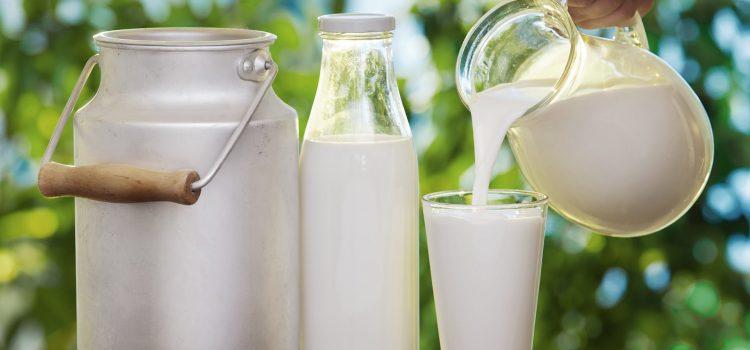 Pieno supirkimas iš pieno gamintojų, mokama kaina per 2019 metų vienuolika mėnesių