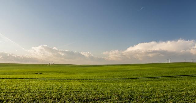 Statistinė informacija apie Lietuvoje deklaruotas žemės ūkio naudmenas ir kitus plotus