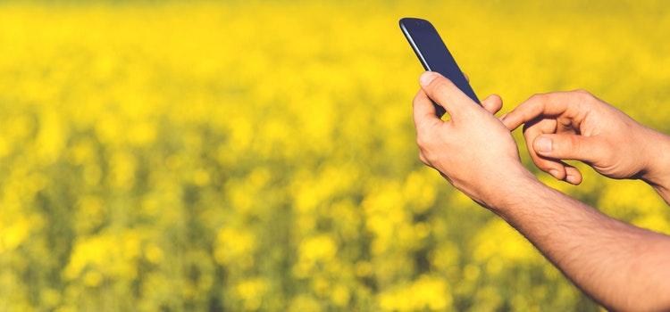Svarbi informacija žemės ūkio valdų valdytojams ir ūkininkams