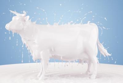 Pieno supirkimas iš pieno gamintojų, mokama kaina per 2019 metų dvylika mėnesių